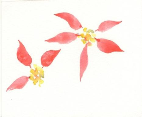 Painting Poinsettias Watercolor Tips By Susie Short
